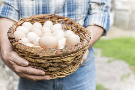Midsection of farmer carrying eggs in wicker basket at farm 写真素材