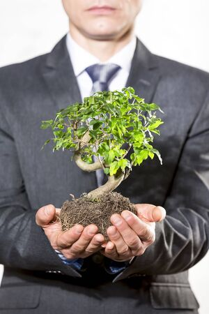 Midsection of businessman holding plant at office Stock fotó