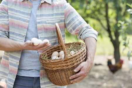 Midsection of mid adult farmer holding eggs in basket at farm