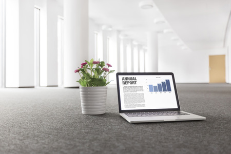 Annual report graph on laptop by flower pot at new empty office Foto de archivo