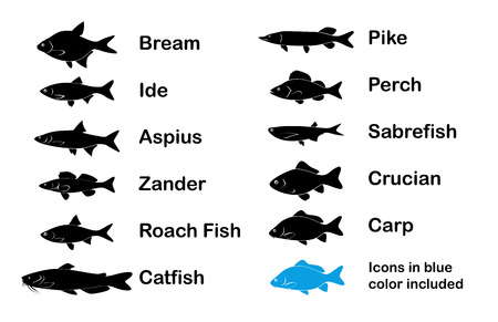 ide: Set of River and Limnetic Fishes in black and blue color on white background, Vector Illustrations Illustration