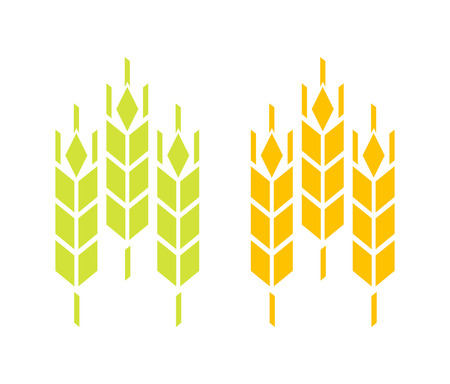 Icon of Wheat and Rye or Barley ears isolated on white background. Sign of Nature Product of High Quality.
