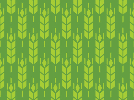 Barley or Rye field in vector pattern, Looped Background in green color