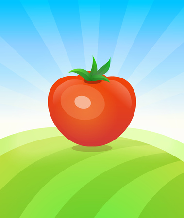 Banner template with Tomato - Vegetables trade poster. Ads Placard with copy space on top and bottom area. Symbol of ripe vegetable under blue sky. Colorful vector illustration.