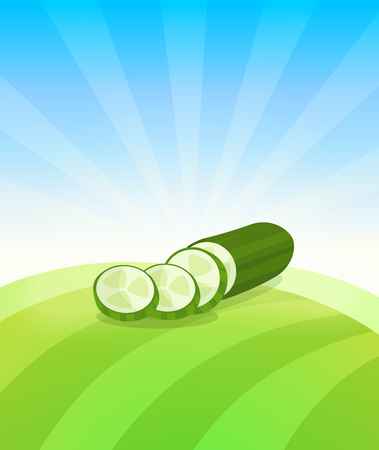 Banner template with Cucumber - Vegetables trade poster. Ads Placard with copy space on top and bottom area. Symbol of ripe vegetable under blue sky. Colorful vector illustration. Çizim