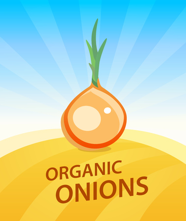 Banner template with Onion - Vegetables trade poster. Ads Placard with copy space on top and bottom area. Symbol of ripe vegetable under blue sky. Colorful vector illustration. Çizim