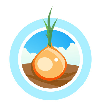 Round vector Logo for onion tradeing. Colorful Emblem with vegetable on field isolated on white background