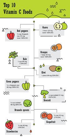 Top 10 vitamin c food infographic in doodle line design Illustration