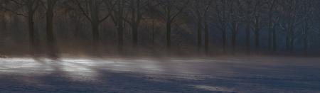 atmospheric: Atmospheric winterpicture  December 8, 2012