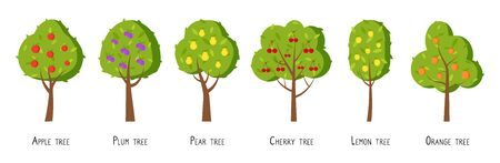 Trees with ripe fruits apple pear flat vector set