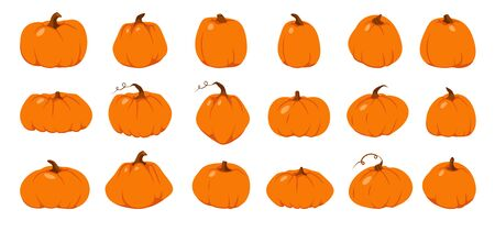 Set of Autumn pumpkin flat icon. Symbol Thanksgiving and Halloween. Cartoon different shape orange gourd. Gather farm harvest, season crop capacity. Ripe vegetable squash. Isolated vector illustration