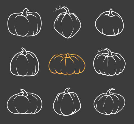 Set of white doodle Autumn pumpkin icon. Line sign Thanksgiving and Halloween, season crop capacity. Contour template different shape gourd. Linear style pictogram Isolated on dark vector illustration 向量圖像