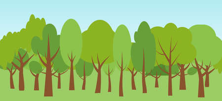 Flat cartoon ecology nature forest landscapes and blue sky. Spring season with green trees oak, birch, fir. Wildlife background for banner, poster or advertising. View of woods. Vector illustration
