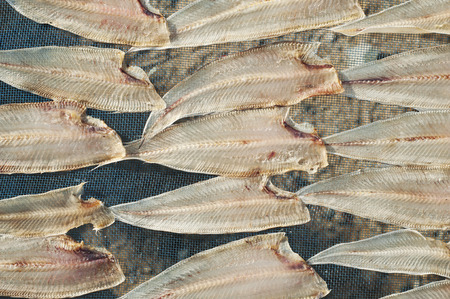hefty: Drying fish at the beach Stock Photo