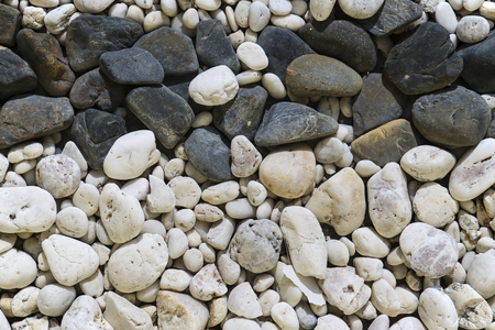 white pebble: Black and white pebble stones background and texture.