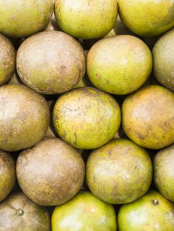 reticulata: Tangerine or Citrus reticulata blanco in the market.