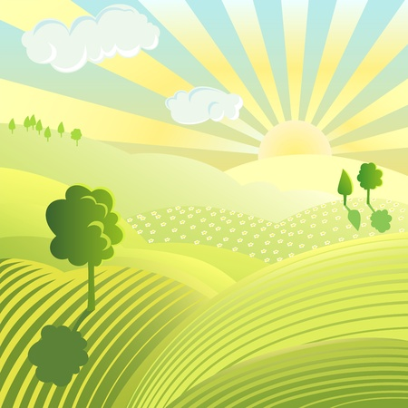 cartoon land: Beautiful landscape. Rural scene with green field and trees on sunny day