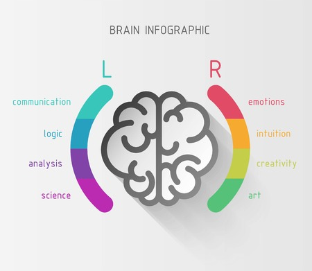 Vector flat brain infographic paper sign with left and right hemisphere in colorful parentheses and different brain functions 向量圖像