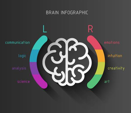 Vector flat brain infographic paper sign with left and right hemisphere in colorful parentheses and different brain functions on black