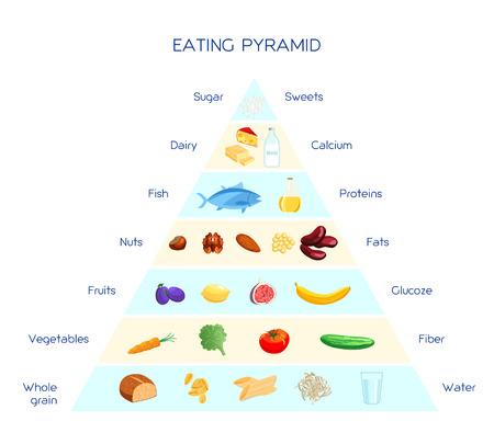 Vector infographies pyramide saine alimentation, système de nutrition quotidienne, protéines glucides et des graisses diététiques à base, concept alimentaire équilibré