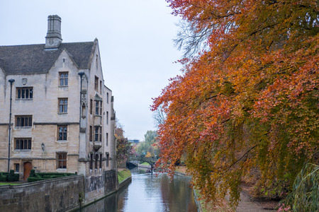 View of building and autumn leaves along river Cam in Cambridge, United Kingdom Stock Photo