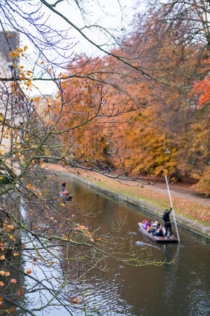 Yellow leaves with blurred image of punting, famous sightseeing boat, along river Cam in Cambridge, United Kingdom