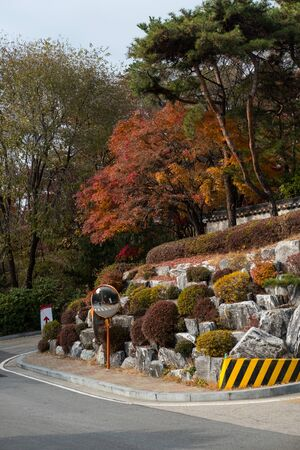 Colorful Red and Orange leaves, autumn season with traditional Korean wall on the background. Korea University, Seoul, South Korea Stock fotó - 138145604