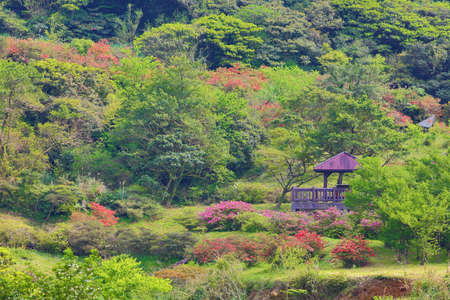Beautiful mountain scenery with pavilion and red flowers Stock Photo