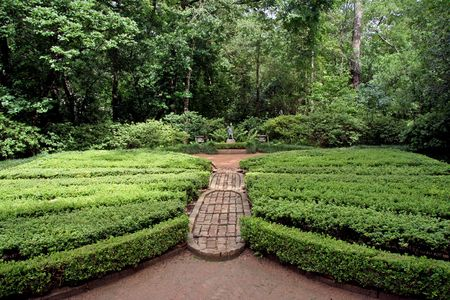 An english garden with a  path and topiary wings photo