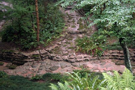 boardwalk trail: A stone pathway going into the forest