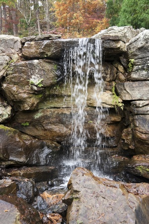 Water flowing over some rocks in the middle of a forest