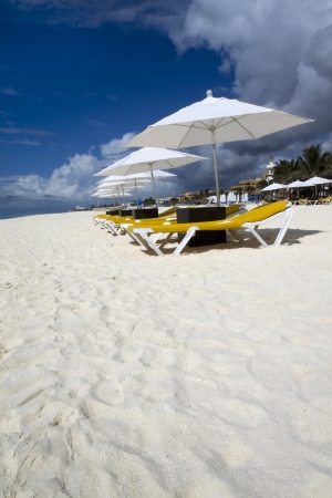 Rows of several lounge chairs and umbrellas on the beach Standard-Bild