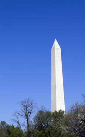 Washington Monument in Washington D C  soaring into the blue sky