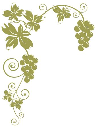 oenology: golden bunches of grapes and leaves over white background. Useful for greeting cards, postcards in theme with the autumn and the harvest, Internet sites about oenology, cuisine and wine sale. Stock Photo