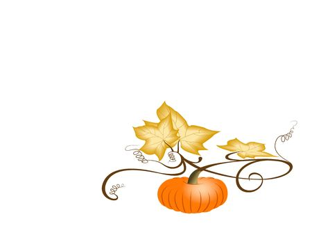 Autumn pumpkin with dry leaves. Illustration on white background with large space for text