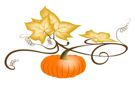 Autumn orange pumpkin with dry leaves. Illustration on white . Jpeg with clipping path. Stock Photo
