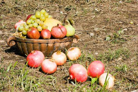 Basket full of autumn fruits. Pumpkin, grapes, pomegranate, apple, pear. Harvest concept.