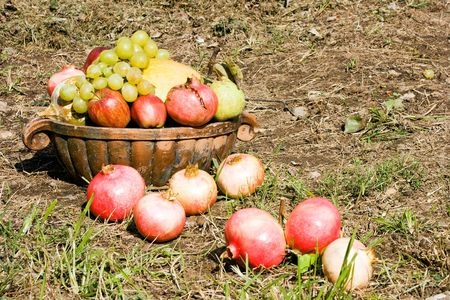 Basket full of autumn fruits. Pumpkin, grapes, pomegranate, apple, pear. Harvest concept. photo