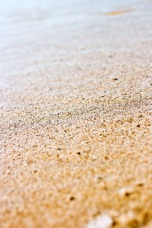 Close up of wet sand on the shoreline. Useful as summer texture or background. Space for copy.