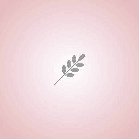 brown rice: single ear of wheat isolated vector web icon