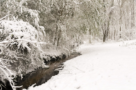 Snow by the Creek Imagens