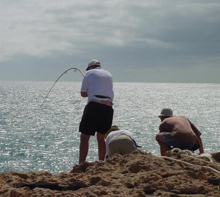 game fishing: Shore Game Fishing 1