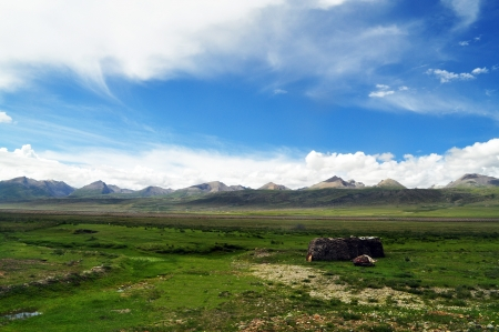 mountainous, a meadow and blue sky with clouds in Tibet, china photo
