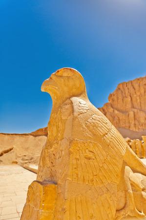 workship: Eagle horus sculpture in Temple of Hatshepsut, Luxor, Egypt
