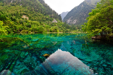 Five flower lake, jiuzhaigou, sichuan, china  photo