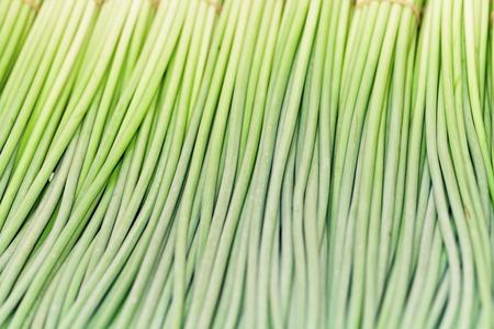 Garlic bolt