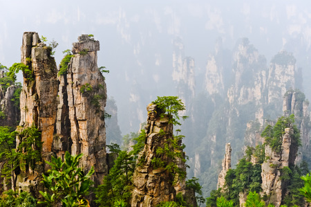 Zhangjiajie National Park in summer, Hunan province, China Imagens