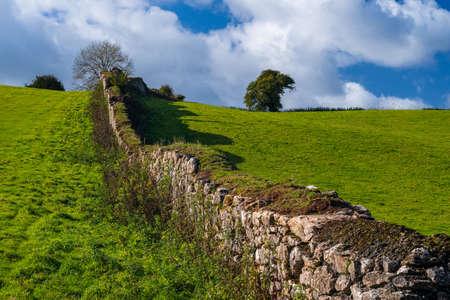 Fields of Berry Pomeroy Village in Devon in England in Europe Stok Fotoğraf
