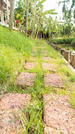 walkway garden 写真素材