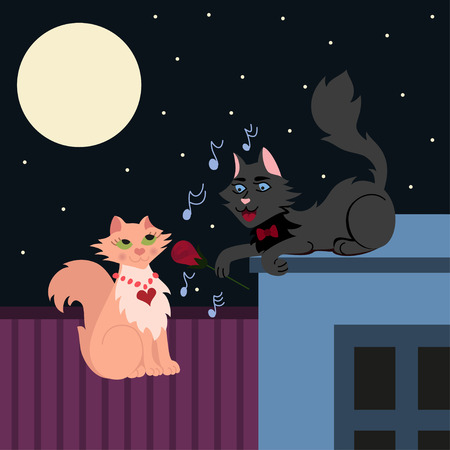 serenade: Night serenade, two loving cats, cat in love sings the serenade, vector illustration